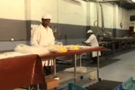Inside the Zelalem Injera factory