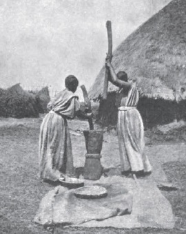 Pounding dried peppers  to make berbere, c. 1901