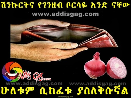 Ethiopian Onion Humor What does a wallet and an onion  have in common? They both make you cry when you open them.