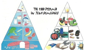 The book's illustration of the food pyramids