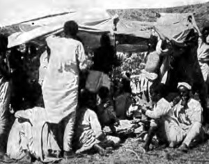Feasting on raw meat at an encampment (1901)